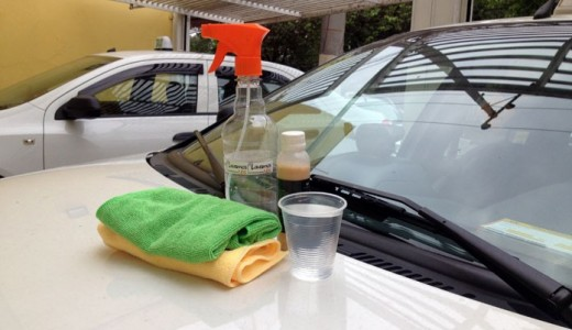 lavar-carro-1-copo-dagua